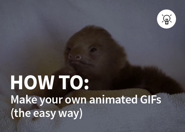 how-to-easy-gifs